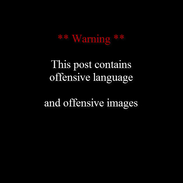 offensive language and offensive images